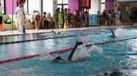 Aquest dissabte, arriba la 26a edició del Míting internacional de natació a Encamp