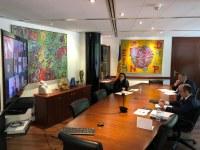 Sessió virtual del Consell de Comú
