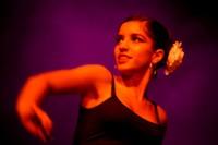 festival dansa-002.jpg
