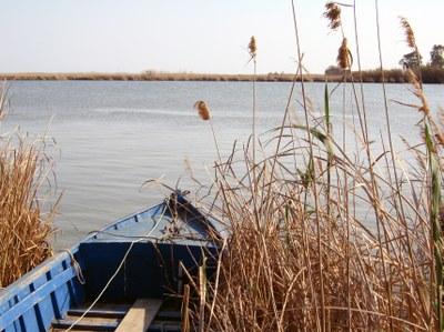 L'APAE organitza una sortida al Delta de l'Ebre
